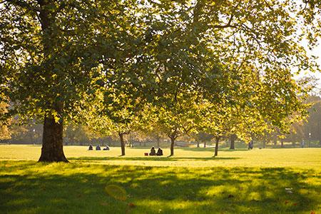 Blog: Ontspannen in Londens parken