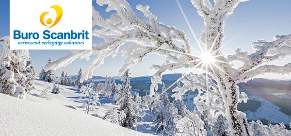 Een waanzinnige winterbeleving