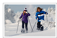 Winter Adventure Saariselkä