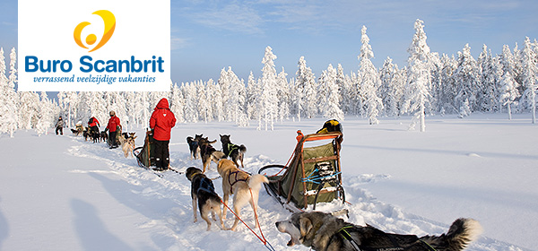 Beleef deze winter de 'Taste of Lapland'