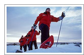 Winter Adventure Best of Lapland