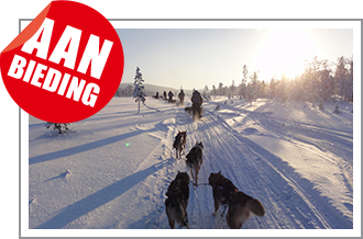 Winter Adventure Fins Lapland