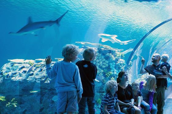 Blog: Kopenhagen met kids