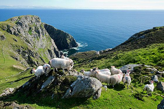 Blog: het onontdekte Ierland